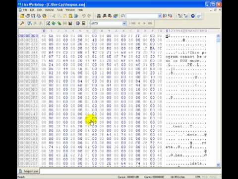 Hex Editor Password Hack with demonstration