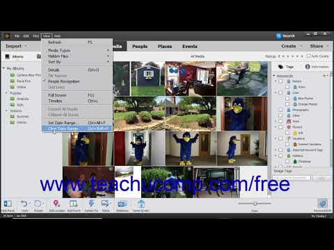Photoshop Elements 2019 Tutorial Date View and Timeline  View Adobe Training