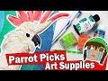 MY PARROT PICKS MY ART CRAFT SUPPLIES Challenge Super Smash Bros DIY