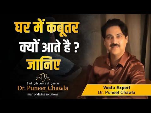 कबूतर शुभ या अशुभ | Vastu Se Ghar Sansar Web Series Vastu Video by Life Guru Dr. Puneet Chawla