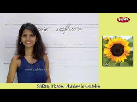 Learn Parts of the Body For Kids | Learn Flowers With Spellings and Pictures | Cursive Writing