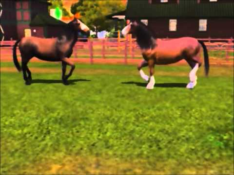 Sims 3 - horses I have bred