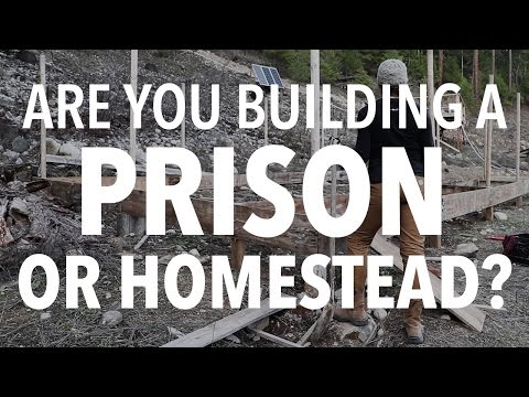 Starting a homestead? Better watch this video first!