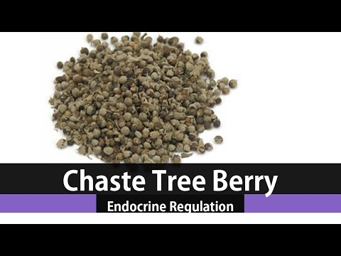 The Health Benefits Of Vitex Chaste Tree Berry