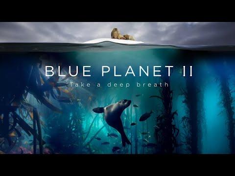 Blue Planet II : The Prequel