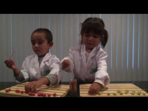 Science in the Kitchen Episode 3: Earthquake Towers Easy Science Activities for Kids