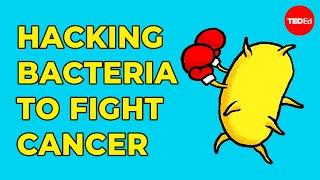 Hacking bacteria to fight disease - Tal Danino