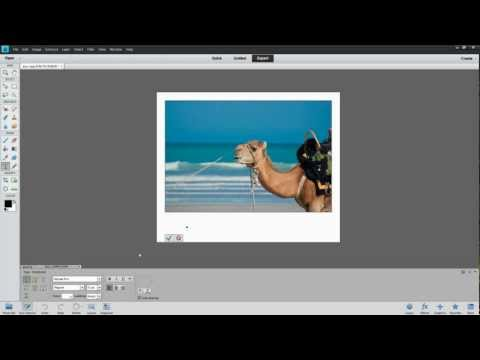Polaroid Frame Effect in Photoshop Elements
