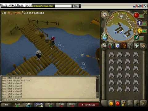 how to catch sharks in runescape