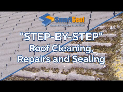 Roof Cleaning, Roof Repairs and application of Roof Coating or Roof Paint