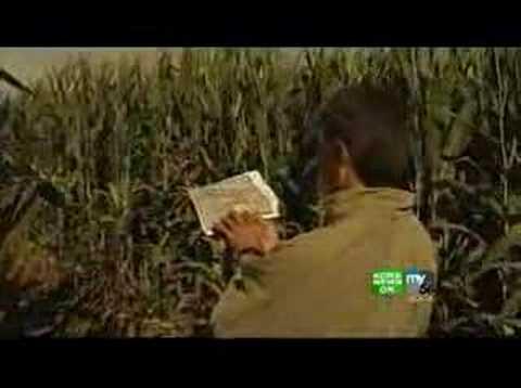 Dixon Corn Maze Is World's Largest
