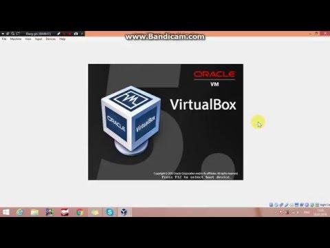 Auto-resize guest display VirtualBox on Ubuntu