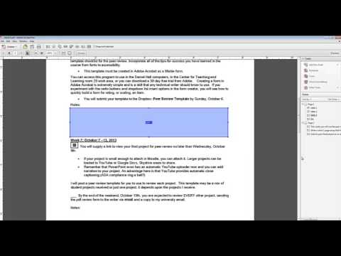 Word Doc to Adobe Acrobat Fillable Form