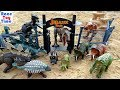 Huge Jurassic World Dinosaurs Collection Toys For Kids Lets Visit The Jurassic Park