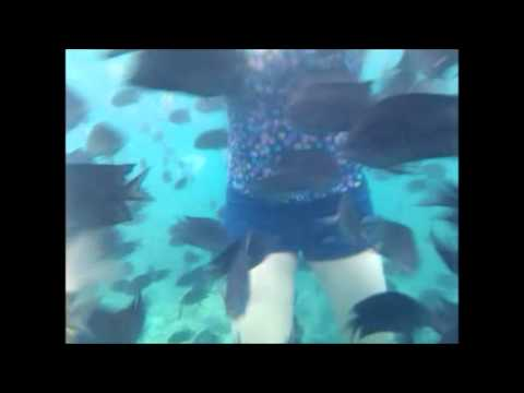 Honda Bay-Snorkeling at Pandan Island Puerto Princesa Palawan Philippines