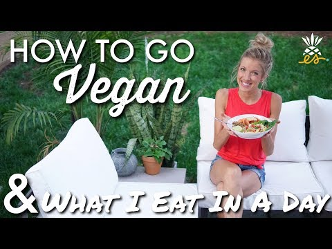 How To Go Vegan (Transition & Success Tips) + What I Eat In A Day (Plant-based, Raw 'til 4)