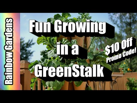 What Have I Grown in a GreenStalk? Let's Take a Peek Plus New Promotion!