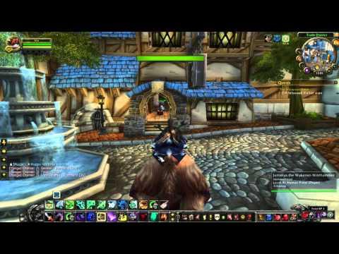 World of Warcraft // Location View // Portal Master (Alliance)