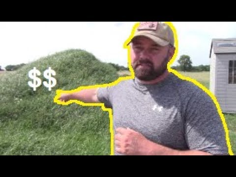HOW TO MAKE MONEY SELLING YOUR GRASS!?! Making Money From Home The Legal Way!