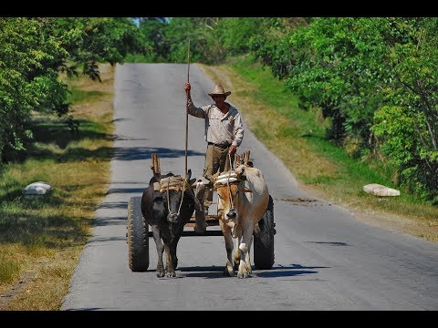Cuba travel: From Havana to Viñales, Trinidad and Santiago de Cuba