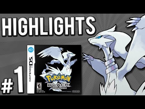 Pokemon Black Randomizer Nuzlocke | PART 1