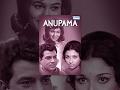 Anupama  Hindi Full Movies  Dharmendra  Sharmila Tagore  Superhit Bollywood Movies