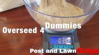 Lawn Overseed 4 Dummies: Do it yourself, DIY, How to: seeding a lawn, reseeding a lawn