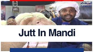 Jutt In Mandi   SAMAA TV   17 AUGUST 2018