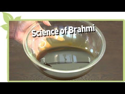 Ayurveda - Science of BRAHMI and natural hair