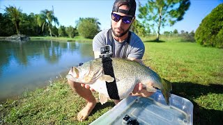 GOPRO Strapped On 12lb Largemouth BASS!! (Underwater Footage!)