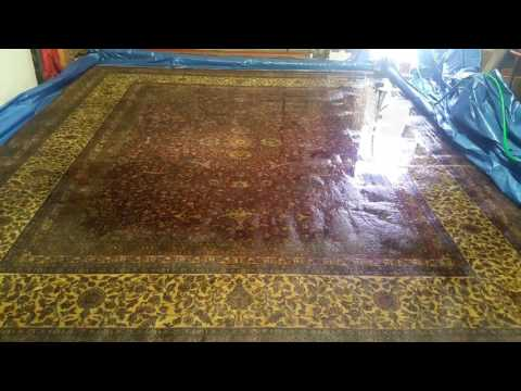 Area Rug Cleaning & Pet Urine removal