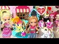 Download Video Download Elsa and Anna Toddlers Pet Adoption! Beauty Salon Makeover & Pet Clinic - Cinderella - Washimals Toy 3GP MP4 FLV