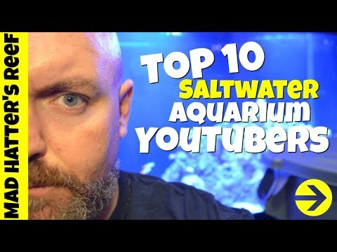 Top 10 Saltwater Aquarium YouTubers