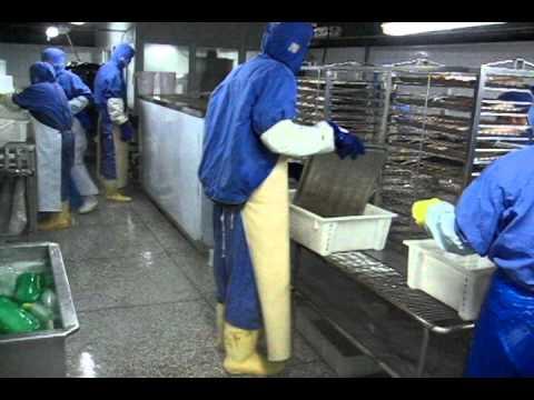 BIF frozen milk fish CHINA
