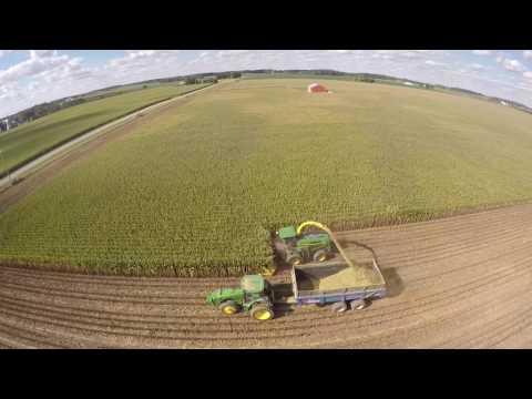 Chopping Corn Silage near Hollansburg Ohio - August 2016