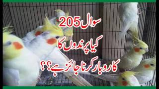 205 Kya Parindo ka Karobar Karna Jaiz hay, Allama Syed Shah Turab ul Haq Qadri