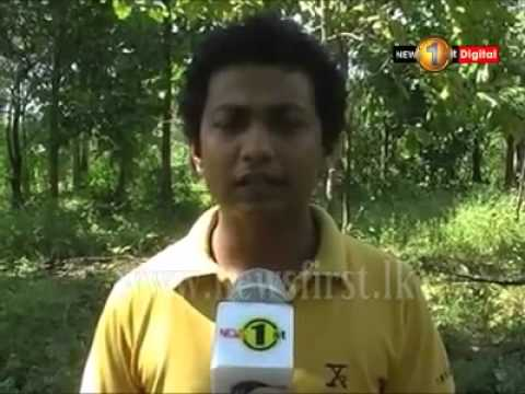 Srilankan Home Made Electric Fence Energizer system