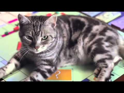 Monopoly - Classic Board Game - New Cat Token - TV Toy Commercial - TV Ad - TV Spot - by Hasbro