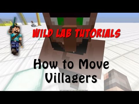 Minecraft Tutorial - How to move villagers