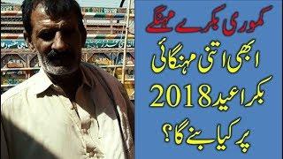 manda chatra Videos - 9tube tv