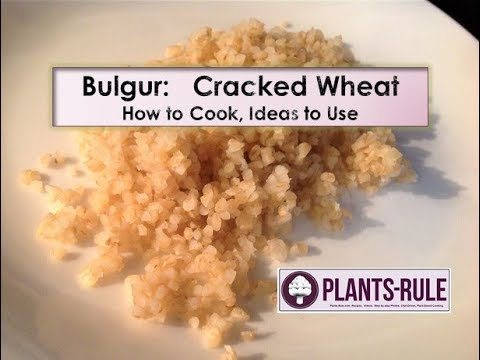 Bulgur: What is it? How to Cook? Tip from Plants-Rule