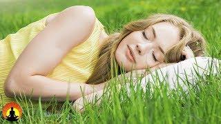 15 Min  Meditation Music for Positive Energy - Buddhist
