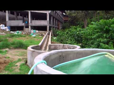Biogas from piggery waste- Batangas, Philippines