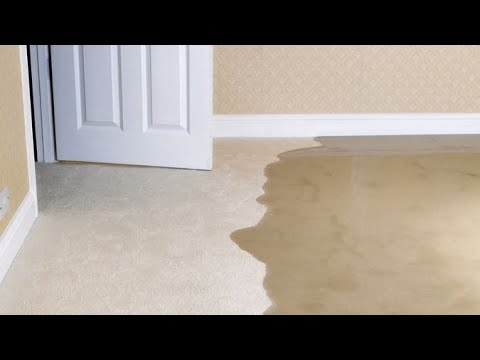 How to Protect Your Home from Flooding with a Water Alarm