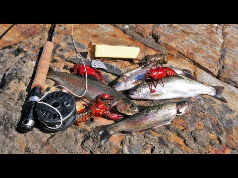 Catch and Cook and Camp Ep. 4 *WILD Trout, WILD Bass, WILD Crayfish*