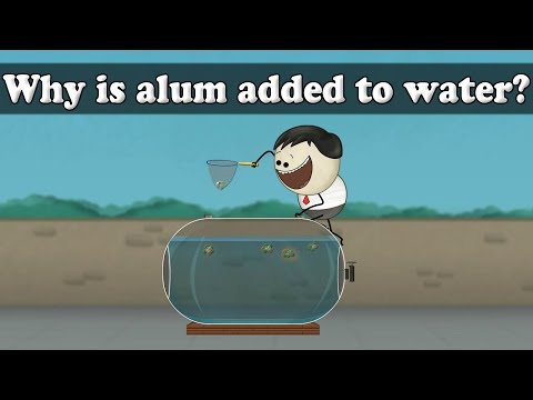 Water Purification - Why is alum added to water? | Smart Learning for All