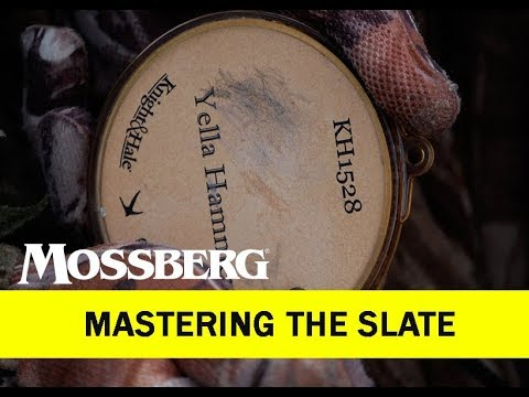 Mastering The Slate: How To Turkey Call