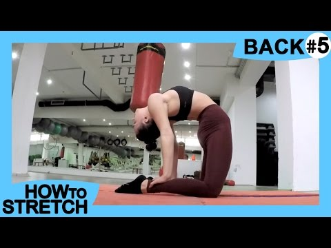 HOW TO STRETCH your BACK | for Gymnastics & Contortion | Exercises for Flexibility VJEZBE ZA LEDJA