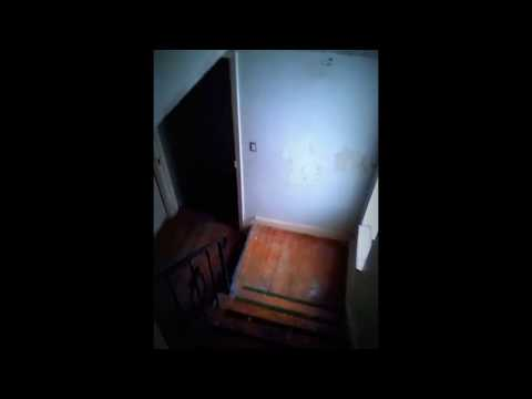 Detroit Michigan House rehab Landlord Pro Investments vs. Everybody