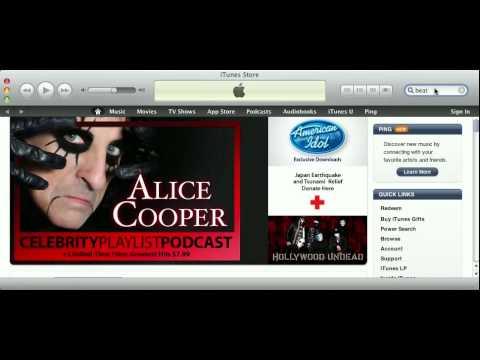 iTunes 10.2.1 - Accessing iTunes Store...